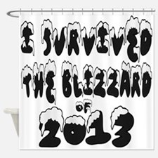 I Survived The Blizzard of 2013 Shower Curtain
