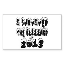 I Survived The Blizzard of 2013 Decal