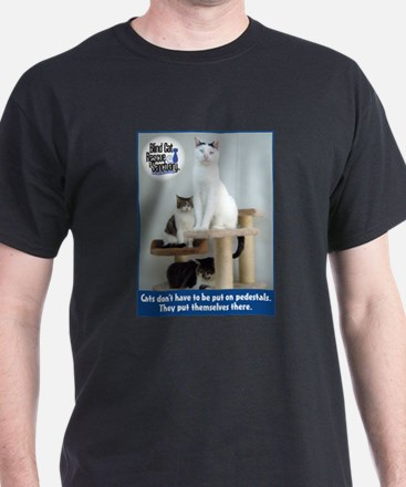 Cats on Pedestals T-Shirt
