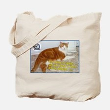 Paul Trying to Sleep Tote Bag