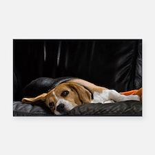 Lazy Beagle - Car Magnet