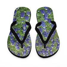Bluebonnet Flip Flops