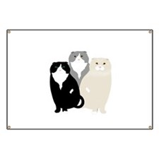 Scottish Fold Banner