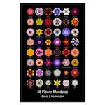 48 Flower Mandalas (23x35 Poster, flower names)