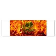Burning skull Bumper Bumper Sticker