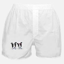 KiniArt Boston Terrier Boxer Shorts