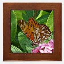 Passion Vine Butterfly Framed Tile