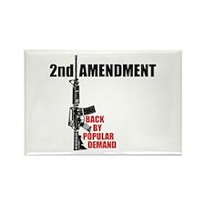 2nd Amendment Back By Popular Demand ARs Rectangle