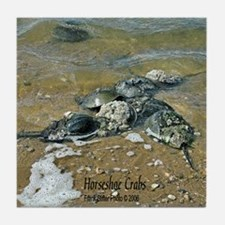 HORSESHOE CRABS Tile Coaster