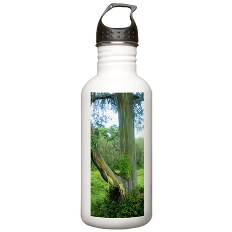 Rainbow Tree Maui Stainless Water Bottle 1.0L