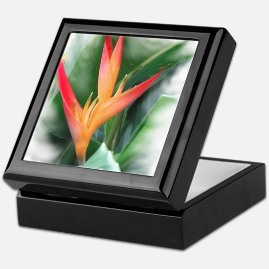 Bird of Paradise Keepsake Box