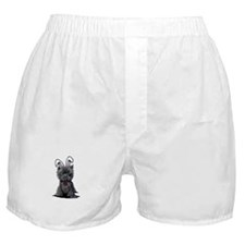Easter Affenpinscher Boxer Shorts