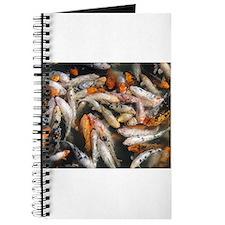 Hundreds of Koi Journal