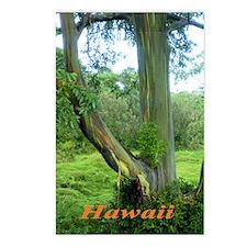 Rainbow Tree Postcards (Package of 8)