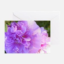 Lynn's hollyhock cards