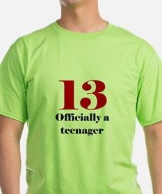 13 Teenager T-Shirt