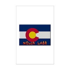 Colorado Molon Labe Posters