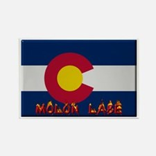 Colorado Molon Labe Rectangle Magnet (10 pack)