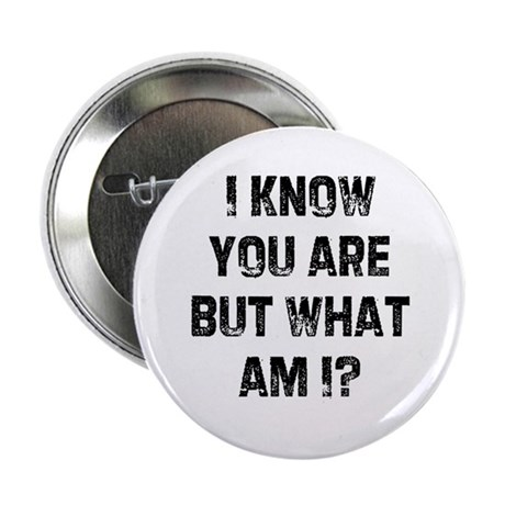 I know you are but what am I? Button