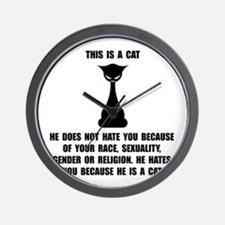 Cat Hates Wall Clock