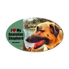 Anatolian Profile by Lake Oval Car Magnet