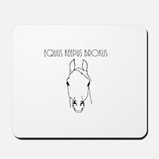 Equus Keepus Brokus Mousepad
