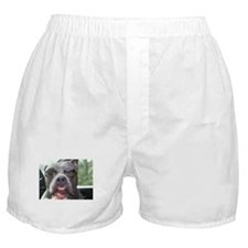 Silly Sock-M Boxer Shorts