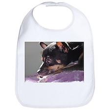 Chihuahua dog thinking Bib