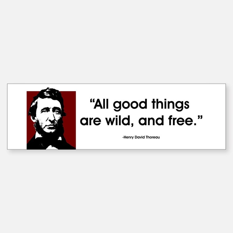 Thoreau. All good things... Bumper Bumper Bumper Sticker