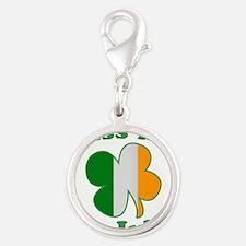 Kiss Me Im Irish Flag St Patricks Day Silver Round