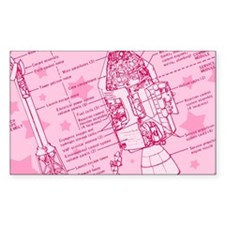 Pink Space Capsule Decal