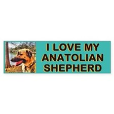 Anatolian Profile by Lake Bumper Sticker