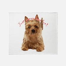aussie terrier Throw Blanket