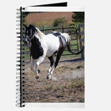 Horse/Pinto Paint Journal