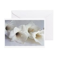 Blank Note Cards (Pk of 10)