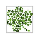 "Shamrocks in a Shamrock Square Sticker 3"" x 3"