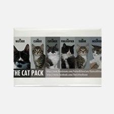 The Cat Pack Rectangle Magnet