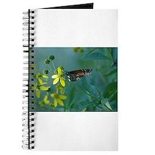 Monarch/ Flower Journal
