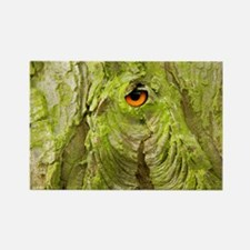 Eye in the Tree Bark Rectangle Magnet