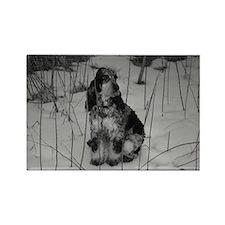 SNOW DOG Rectangle Magnet