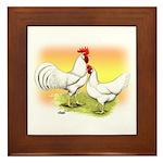 White Leghorn Chickens Framed Tile