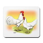 White Leghorn Chickens Mousepad