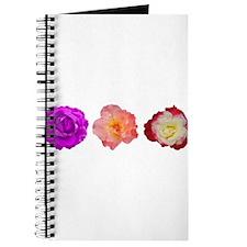 Three beauties Journal