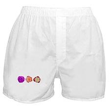 Three beauties Boxer Shorts
