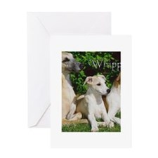 whippets Greeting Cards