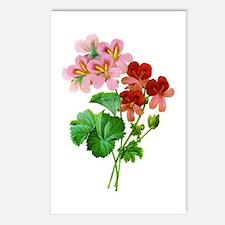 Geranium Variete by Pierre Joseph Redoute Postcard