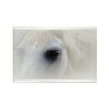 white horse Rectangle Magnet