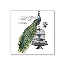 Peacock Birdcage Sticker