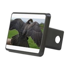 Peregrine Falcon Hitch Cover