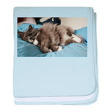 Reclining Cat baby blanket